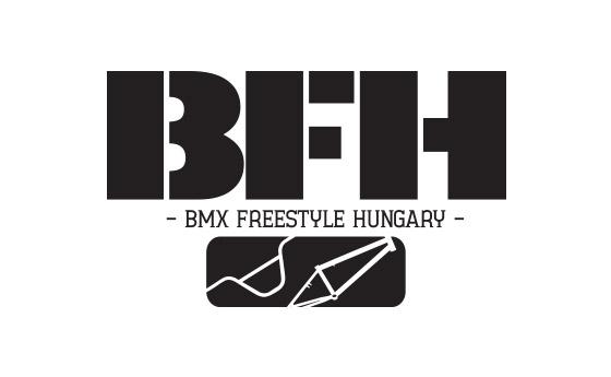 A BFH működése 2013 – 2018